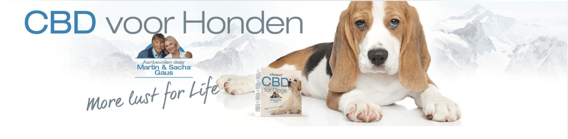 Cibapet CBD Pastilles voor honden-1