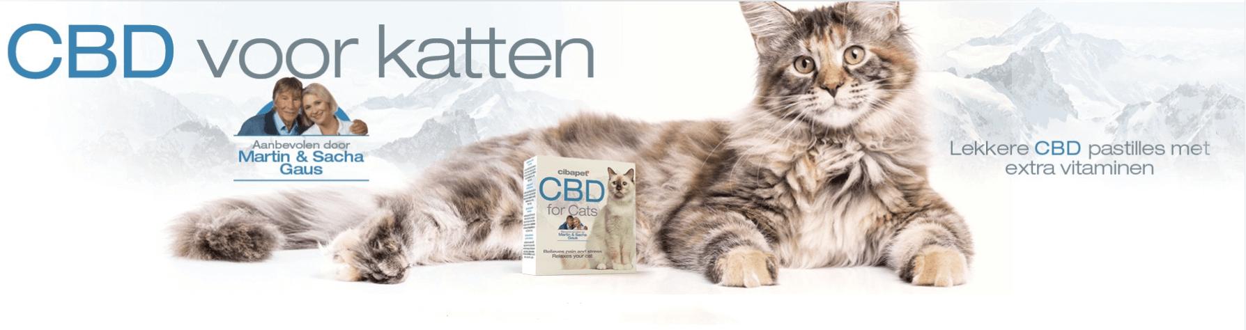 Cibapet CBD Pastilles voor katten-1
