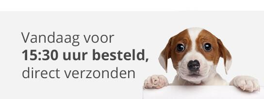 Cibapet CBD-olie 2% voor honden-1